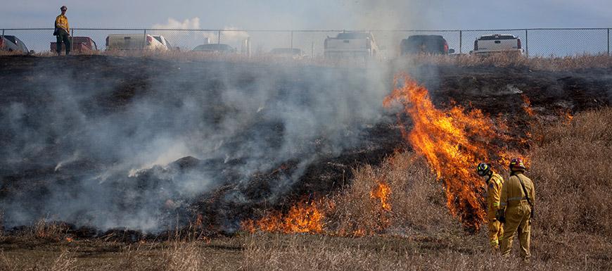 Hazard Reduction Burning