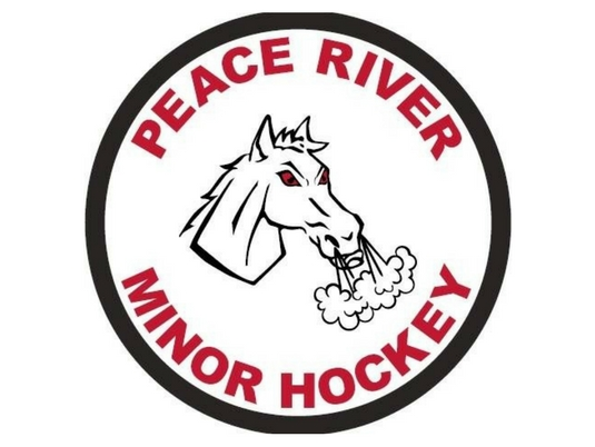 Rocky river midget hockey ideal